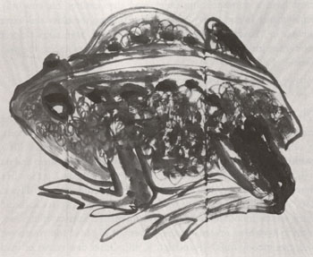 Morris Graves - Toad